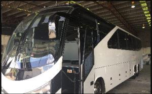 Our Fleet - 50 Seater Luxury